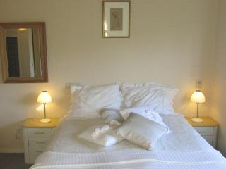 Comfy cozy apt. at lake and country side Amsterdam - Vinkeveen vacation rentals