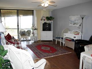 Hibiscus Resort - A103, Ocean Front, 2BR/2BTH, 3 Pools, Wifi - Saint Augustine vacation rentals