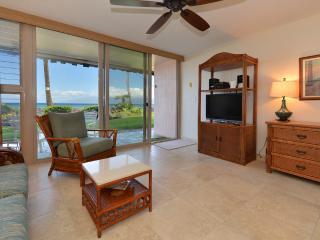 102 Kulakane -Direct Oceanfront - Lahaina vacation rentals