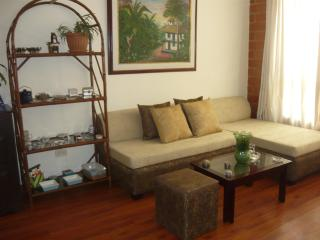 Modern and big flat in Usaquen - Bogota vacation rentals