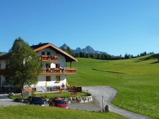 Luxury 2-bedroom apartment with sauna - Ehrwald vacation rentals