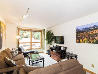 Wonderful 1 bedroom Apartment in Telluride with Internet Access - Telluride vacation rentals