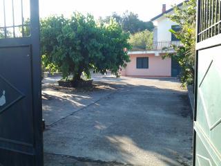 Etna green house - Piedimonte Etneo vacation rentals
