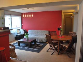 Appartement lumineux de standing - chateau de caen - Caen vacation rentals