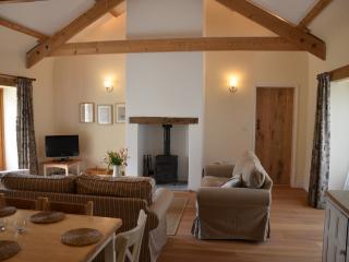 Bright 2 bedroom Barn in Bideford - Bideford vacation rentals
