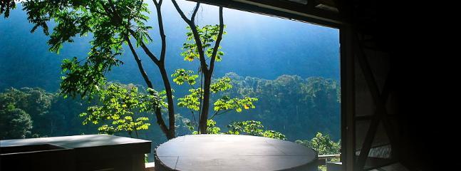 Designer home with stunning views - Image 1 - Ciudad Colon - rentals