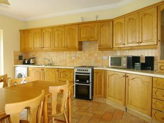 Spacious House with Internet Access and Satellite Or Cable TV - Tramore vacation rentals