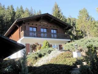 Maison des alpes - Anzere vacation rentals