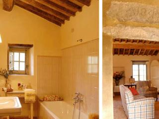 Charming 4 bedroom Villa in Montalcino - Montalcino vacation rentals