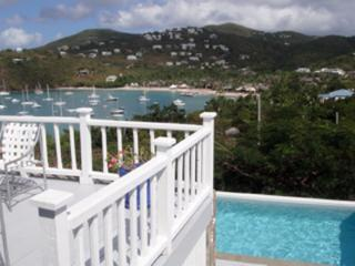 Pool and beautiful views - Cruz Bay vacation rentals