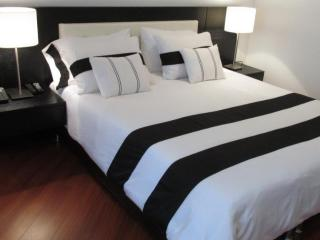 WOW AMAZING, MODERN 2BR ZONA ROSA - Bogota vacation rentals