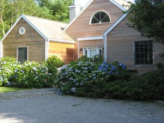 Bridgehampton South, Village Gem! - Amagansett vacation rentals