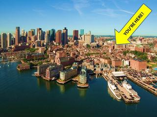 BOOK ONLINE! Boston's Best Location in Back Bay, Walk Everywhere AN2 - Boston vacation rentals
