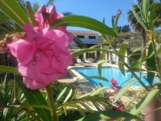 Casa Llenes - Benissa vacation rentals