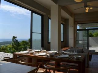 David SamStrong Villa (B&B) - Taitung vacation rentals