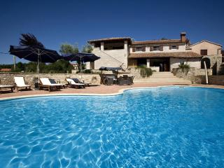 Villa Regina,a luxury villa in the heart of Istria - Visnjan vacation rentals