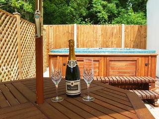 WLON8 - Norfolk vacation rentals