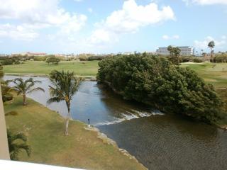 Divi Golf View Studio condo - DR43 - Oranjestad vacation rentals