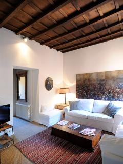 Trevi lovely terrace apartment - Rome vacation rentals