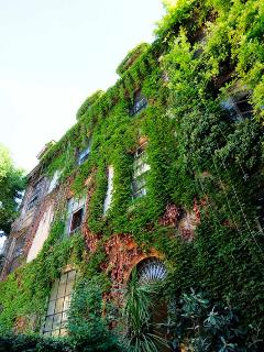 Margutta luxury loft - Rome vacation rentals