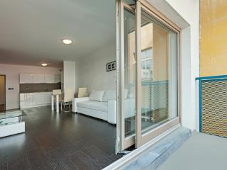 Luxury Apartment close to the city center - Prague vacation rentals