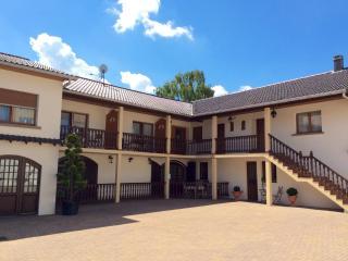 1 bedroom Apartment with Internet Access in Metz - Metz vacation rentals