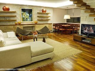Amazing 2 br duplex in exclusive area - Buenos Aires vacation rentals