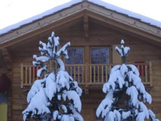 Chalet Alpina 1 bedroom apartment 200m from lifts - La Thuile vacation rentals