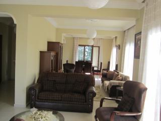 Amazing dubleks flat @ Nicosia! - Nicosia vacation rentals