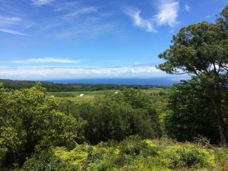 Hilltop, end of road, waterfall, wide ocean views - Honomu vacation rentals