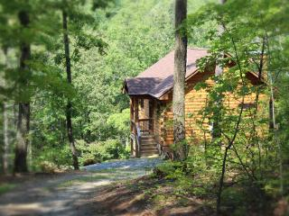 A Rustic-chic Cabin Near Shenandoah National Park - Virginia vacation rentals