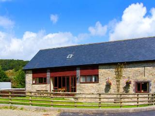 GLANYRAFON, spacious family base, views, flexible bedrooms, in countryside near Rhayader, Ref 12670 - Rhayader vacation rentals
