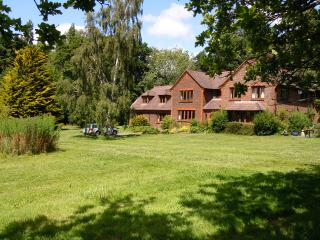 Heronwood Annexe 3 miles from Goodwood. - Chichester vacation rentals