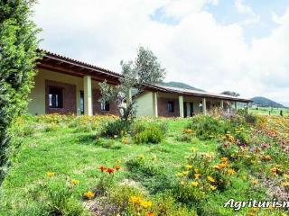 Bright 6 bedroom Finca in Buggerru - Buggerru vacation rentals