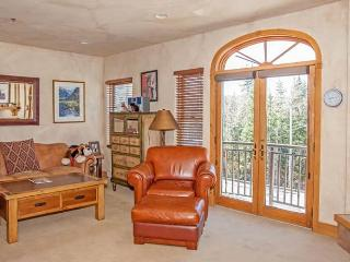 Perfect 1 bedroom Telluride Apartment with Internet Access - Telluride vacation rentals