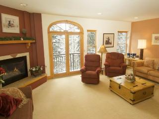 Nice 1 bedroom Apartment in Mountain Village - Mountain Village vacation rentals