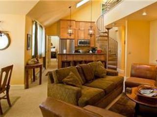 Blue Mesa Lodge #40 - Image 1 - Telluride - rentals