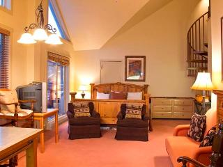 Blue Mesa Lodge #41C - Telluride vacation rentals
