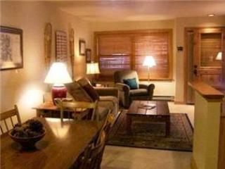 Cimarron Lodge #22 - Image 1 - Telluride - rentals