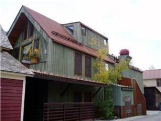 Elk's Park House - Image 1 - Telluride - rentals