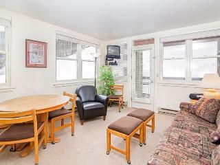 Etta Place #1 - Telluride vacation rentals