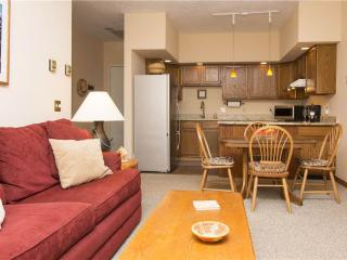 Nice Condo with Internet Access and Television - Telluride vacation rentals