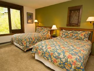 Manitou Lodge #3 - Telluride vacation rentals