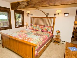 Convenient 1 bedroom Telluride House with Internet Access - Telluride vacation rentals