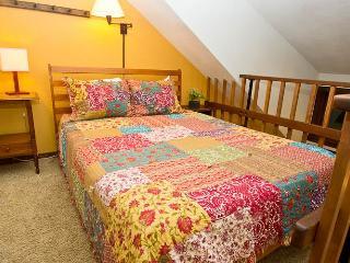 Convenient 1 bedroom House in Telluride - Telluride vacation rentals