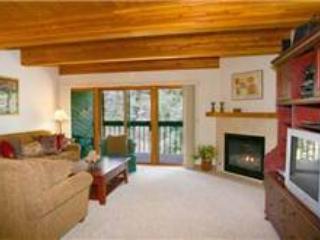 Riverside Condos #A102 - Image 1 - Telluride - rentals