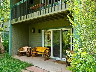 Riverside Condos #A03 - Telluride vacation rentals
