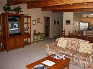 Riverside Condos #D03 - Image 1 - Telluride - rentals