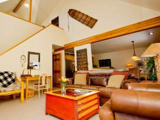 Smuggler #B - Telluride vacation rentals