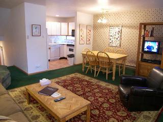 Telluride Lodge #311 - Telluride vacation rentals